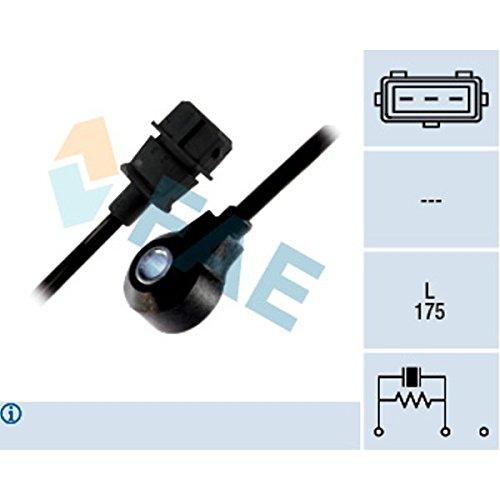 FAE 60143 Inyecció n de Combustible Francisco Albero