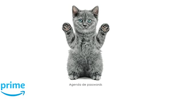 Agenda de passwords: Agenda para endereços electrónicos e passwords - Capa gatinho brincalhão (Agendas com gatos) (Portuguese Edition): Coisas Realmente ...