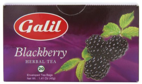 Galil Tea, Blackberry, 20-Count Boxes (Pack of 6) by Galil
