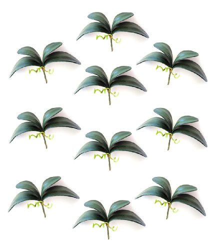 10 Artificial Green Flower Orchid Phalaenopsis Leaves Decorative Potted Plant Leaf Arrangement