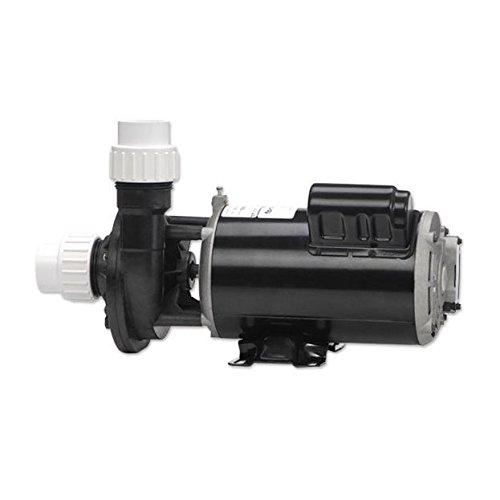 Gecko Alliance 021150051010 2 hp Flo-Master Series Pump, 230V - Dual Speed ()