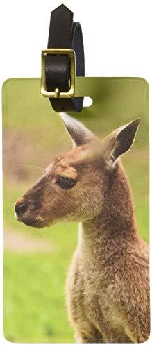 Graphics & More Kangaroo-Australia Australian Luggage Tags Suitcase Carry-on Id, White