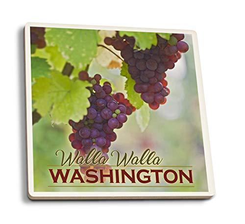 Lantern Press Walla Walla, Washington - Wine Grape Harvest (Set of 4 Ceramic Coasters - Cork-Backed, Absorbent)