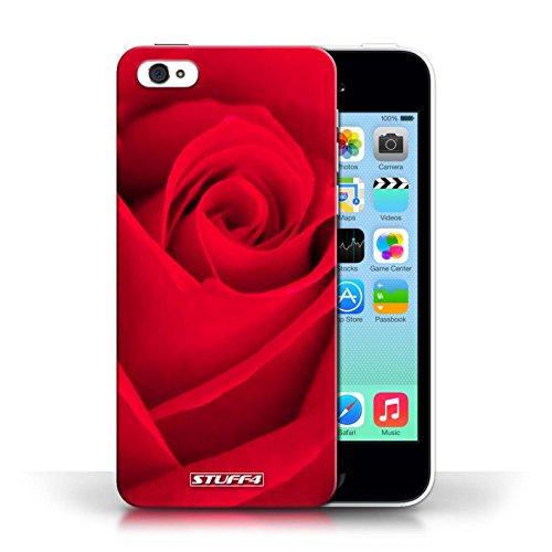 Etui pour Apple iPhone 5C / Rouge conception / Collection de Rose
