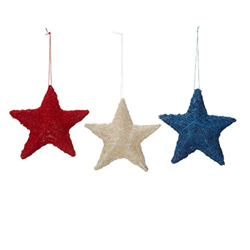 White Star Ornament (Darice Patriotic July 4th Decor - Sisal Star Red Blue White Ornaments)