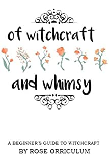 Practical magic a beginners guide to crystals horoscopes of witchcraft and whimsy a beginners guide to basic witchcraft fandeluxe Image collections