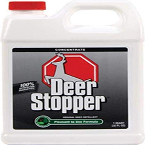 Deer Stopper Quart Concentrate