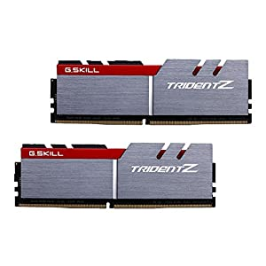 G.SKILL F4-3200C16D-16GTZB Trident Z Series 16GB (2 x 8GB) 288-PinDDR4-3200MHz, Red and Silver/black