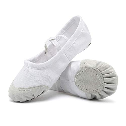 (DoGeek Ballet Shoes for Girls Practise Ballet Slipper Dance Shoe Canvas Split Sole Ballet Shoes for Women Kids Toddlers(White))