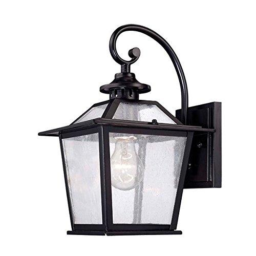 Acclaim 9702BK Salem Collection 1-Light Wall Mount Outdoor Light Fixture, Matte Black Review