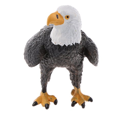 Baoblaze Simulation Science & Nature Animal Bird Model Figurine Kids Toy Collection Home Decoration Party Favors- Bald Eagle