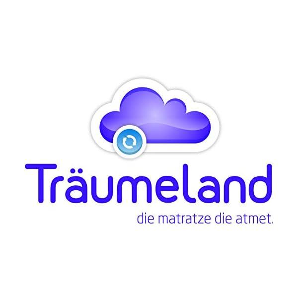 Träumeland T030702 Materasso Brise Light per Culla, 45 x 90 x 6 cm (Quadrata), 38% lyocell, 62% polyester 6 spesavip
