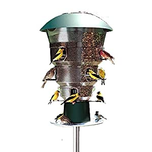 Wild Bill's 12 Station Squirrel Proof Bird Feeder