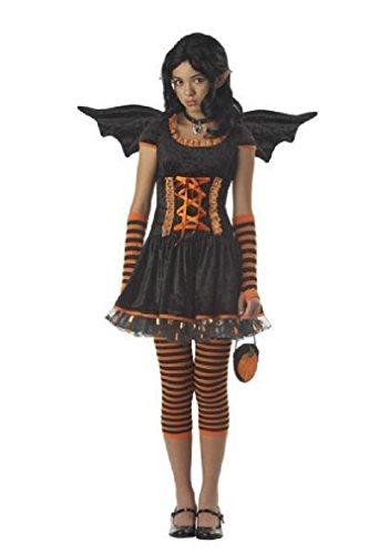 Fancy Pumpkin Pixie Bat Fairy Tween Halloween Costume (Beauty Queen Fancy Dress)