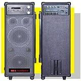 ibiza - Pack Karaoke Portable Lecteur Dvd/Usb/Mp3 Tuner 2Micros