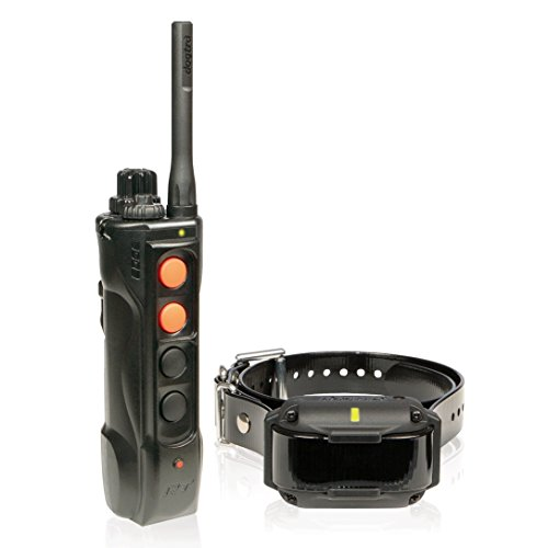 Dogtra Edge Expandable Remote Training Collar System, Black