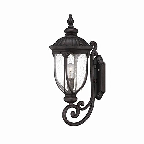 Acclaim 2211BC Laurens Collection 1-Light Wall Mount Outdoor Light Fixture, Black Coral
