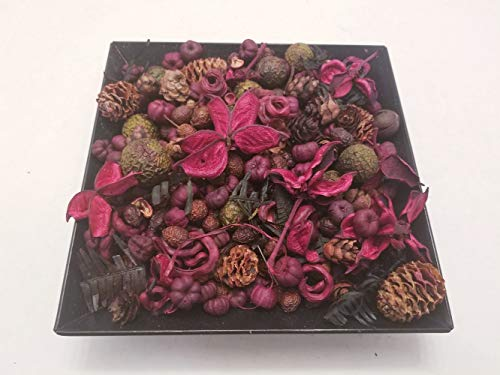 Nature's Lot (Reindeer Forrest Potpourri Handmade in Lancaster County PA. Pinecones and Beautiful Botanicals, 28-32 oz by Volume - Perfect Christmas Potpourri, but Looks Great All Year