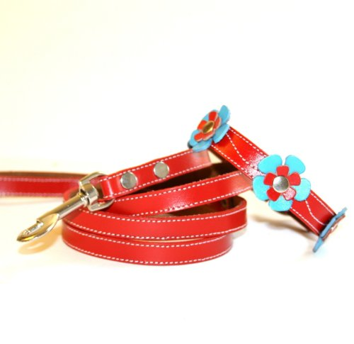 The Cool Puppy Delilah Leather Dog Collar and Leash Set - Blue and Red Flowers Large (12-14 inches)