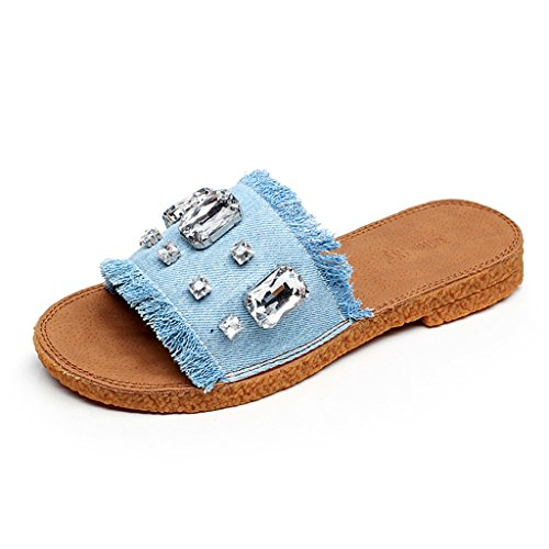 PENGFEI Chanclas de playa para mujer Zapatillas de vaqueros Zapatillas de verano Zapatillas de playa Zapatillas de mujer azul Cómodo y transpirable ( Color : Azul , Tamaño : EU39/UK6/L:245mm ) Azul