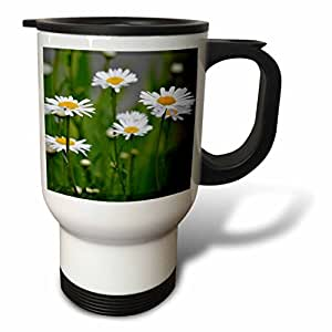PS Flowers - iLove Spring - White Daisies - Flowers - Photography - 14oz Stainless Steel Travel Mug (tm_51395_1)