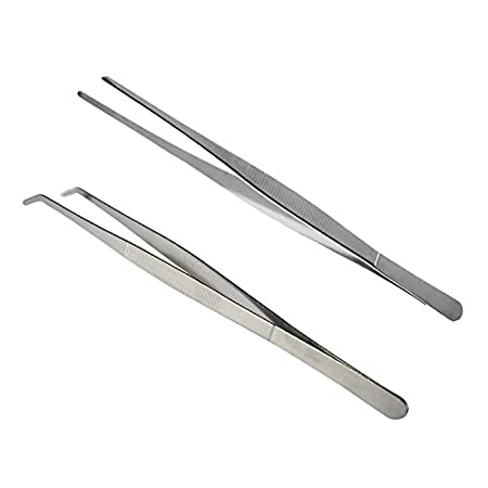 Bwogue 2pcs Extra Long Stainless Steel Tweezer Feeding Tool - 11.8 inches, Safe and Durable to Hold Worms, Crickets and Bugs, Great for Reptiles, Iguanas, Bearded Dragons, Lizards, Geckos
