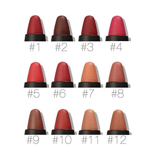Fashine New Waterproof Lip Pencil Professional Makeup Foundation Soft Crayon Lipstick Lipstick