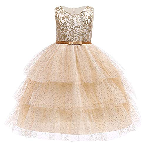 Baby Embroidered Formal Princess Dress for Girl Elegant Birthday Party Dress Girl Dress Baby Girl Christmas 2-14 Years,As Picture6,8 ()