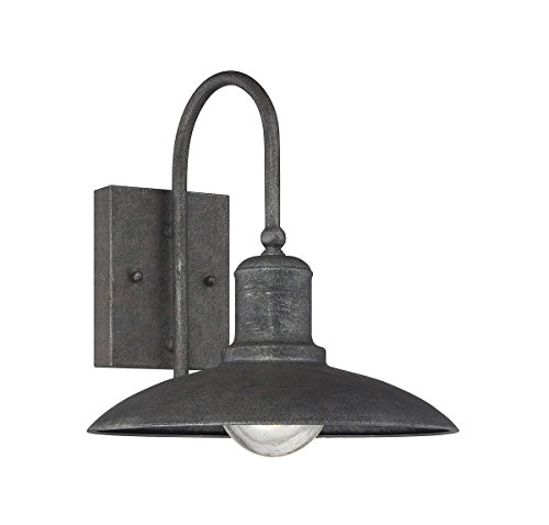Cheap Savoy House 5-5031-1-32, Mica Wall Lantern, Artisan Rust