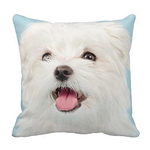Maltese Puppy Pillow Case