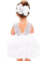 Girl Baby Girl Beaded Backless Lace Back Tutu Tulle Flower Girl Party Dress