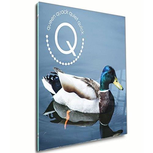 Alphabet Q for Queen Quack Quiet Quick Acrylic Print Wall Decor Wall Art - Shadow Mount, 20