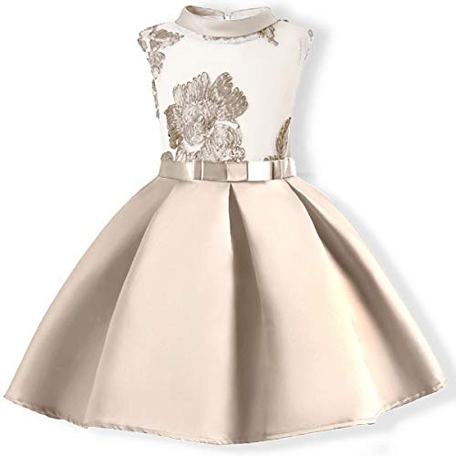 (AYOMIS Flower Girl Pageant Dress Kids Party Embroidery Wedding Dresses 2-9 Years(Apricot 2-3Y))