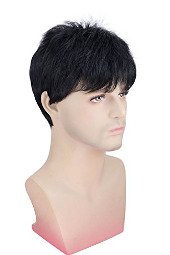 Kalyss Men's Short Straight Black Wig Heat Resistant Synthetic Hair Wig 12 inch