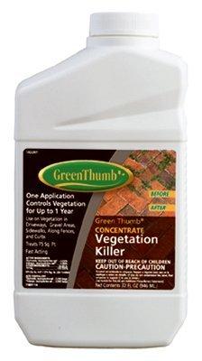 BONIDE PRODUCTS 5121GT Thumb Quart Concentrate Vegetable Killer, Green