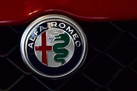 Iggy Emblem Emblem Logo Kompatibel 74 Mm A Colori 145 146 147 156 159 Giuliette Mito Auto