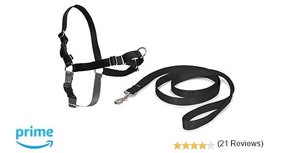 PetSafe Easy Walk - Arnés para caminar, talla S (mascota Anchura ...