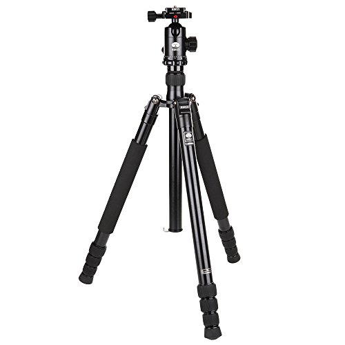 Sirui T-2004XL 4-Section Aluminum Tripod with E-20 Ball Head, 26.5lbs Capacity, 64'' Max Extended Height by Sirui