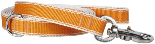 Waggo Stripe Hype Leash - Tangerine - Large - 6' x 1 inches