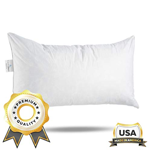 ComfyDown 95% Feather 5% Down, 12 X 16 Rectangle Decorative Pillow Insert, Sham Stuffer - Made in USA ()