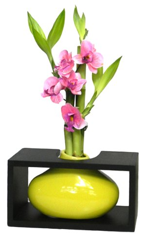 (GoGoGreen88 - 3 Stems of Lucky Bamboo in Framed Yellow Paint Blob Vase w/Silk Orchid)