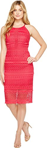 Laundry by Shelli Segal Women's Fringe Venise Dress with Lace Inserts Bright Rose Dress