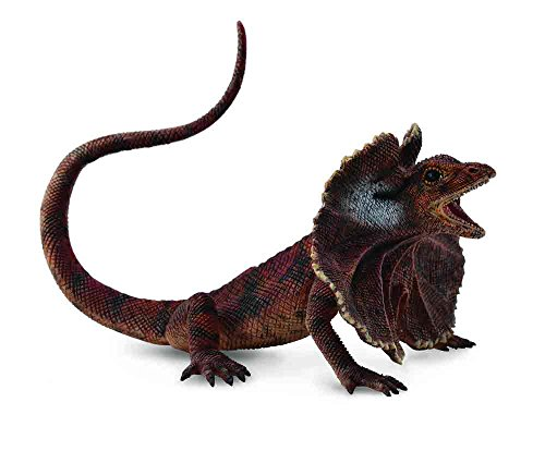 CollectA Insects Frill-Necked Lizard Toy Figure - Authentic Hand Painted -