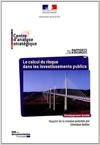 Lire un Le calcul du risque dans les investissements publics, N° 36 pdf epub