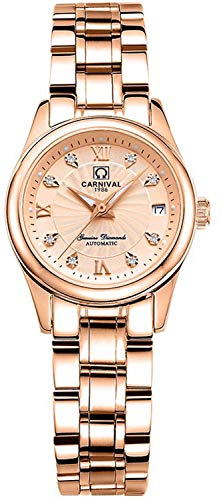 Women's Automatic Mechanical Watch Casual Fashion Analog Waterproof Stainless Steel Rose Gold Dress Watch (Rose Gold)