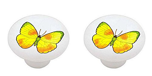 SET OF 2 KNOBS - Orange Barred Sulphur Butterfly - Butterflies by DVR - DECORATIVE Glossy CERAMIC Cabinet PULLS Dresser Drawer KNOBS -