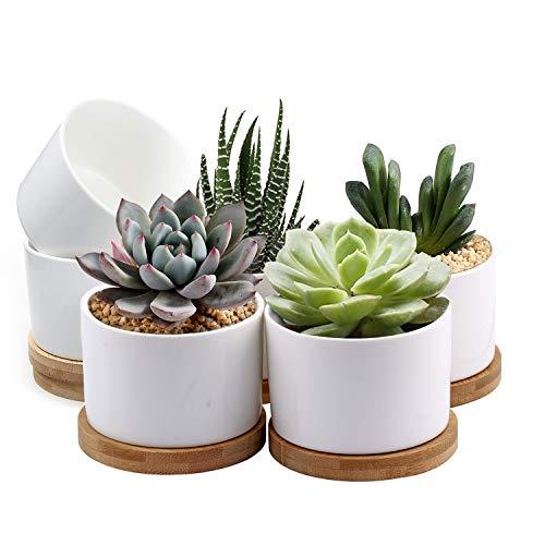 Succulent Pots, ZOUTOG White Mini 3.15 inch Ceramic