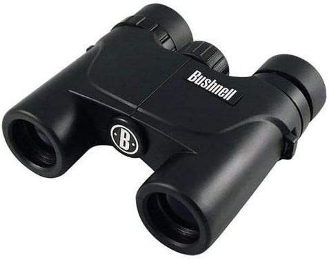 Bushnell 10x25mm Voyager Waterproof Compact Roof Prism Binocular with 6.8 Degree Angle of View, Black