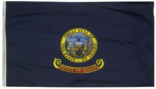 Annin Flagmakers Model 141360 Idaho State Flag 3x5 ft. Nylon SolarGuard Nyl-Glo 100% Made in USA to Official State Design Specifications. ()