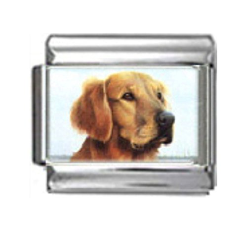 Stylysh Charms Golden Retriever Dog Photo Italian 9mm Link DG216